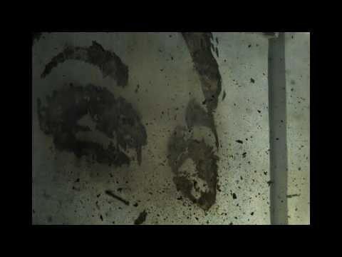Alexandre Farto – Arte Esplosiva