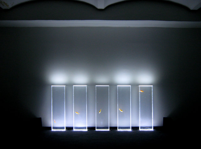 Quintetto – Interactive Installation