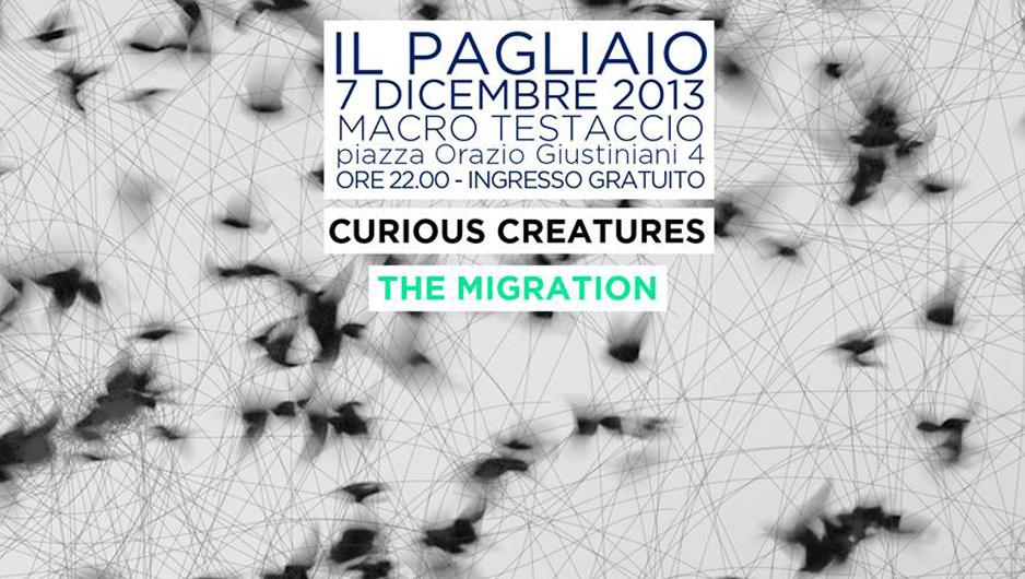 il_pagliaio_the_migration_macro